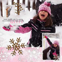 Lynnie-snowtopost