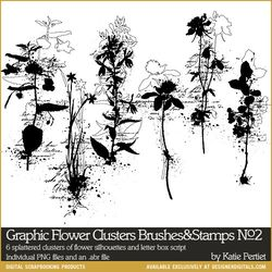 KPertiet_GraphicFlowerClustersNo2PREV