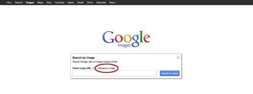 Google-Image-Recognition-step3