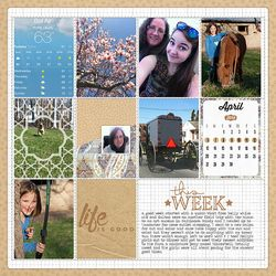 KPertiet_ProjectLife_Wk15PREV
