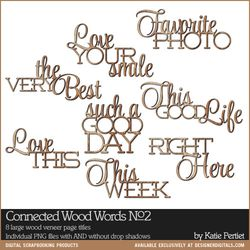 KPertiet_ConnectedWoodWordsNo2PREV