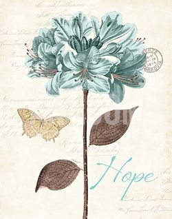 KPertiet_SlatedBlue-hope