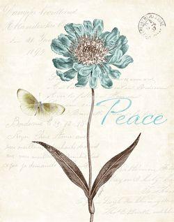 KPertiet_SlatedBlue-peace