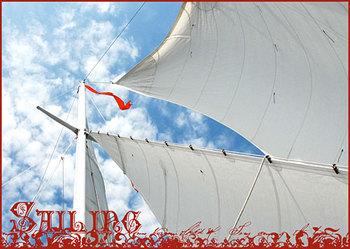 Sailing7307